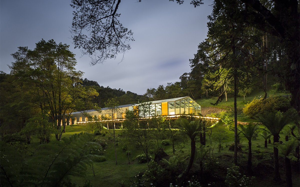 Brazilian Jungle Home Makes a Strong Case for Glass House InsideHook
